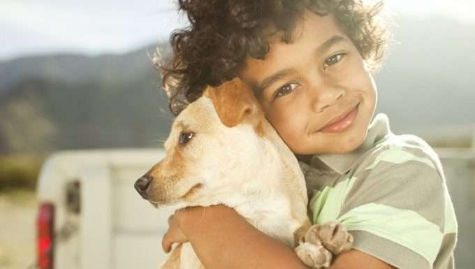 What Your Child Can Learn From Dogs